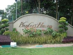 Plantershaven thumb