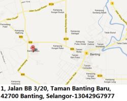 130429g7977 banting thumb