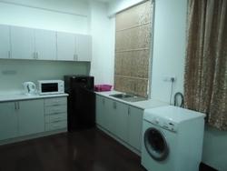 Olives studio kitchenette pantry washer dryer etc thumb